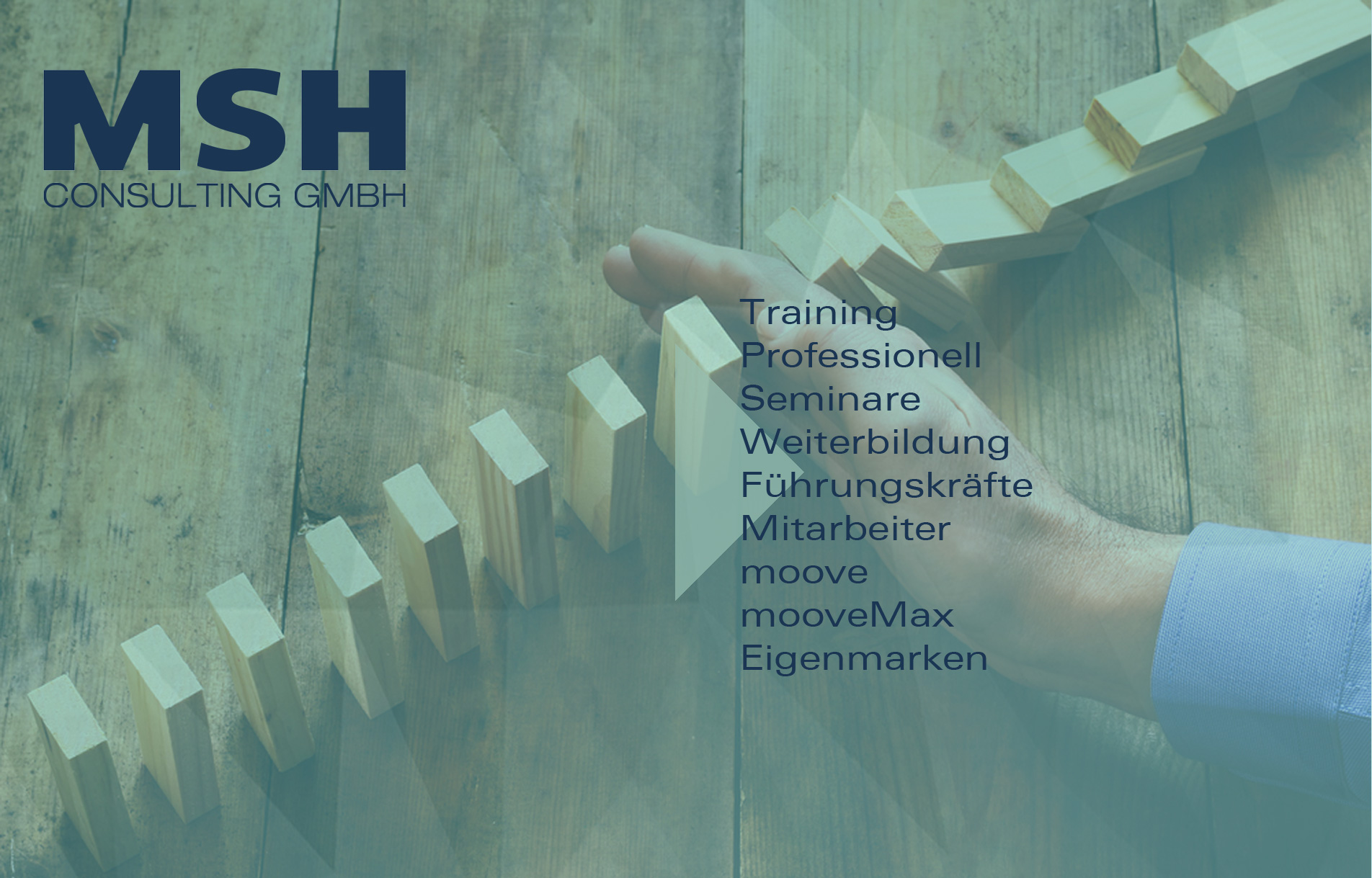 MSH-Consulting